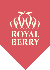 Logo Royal Berry