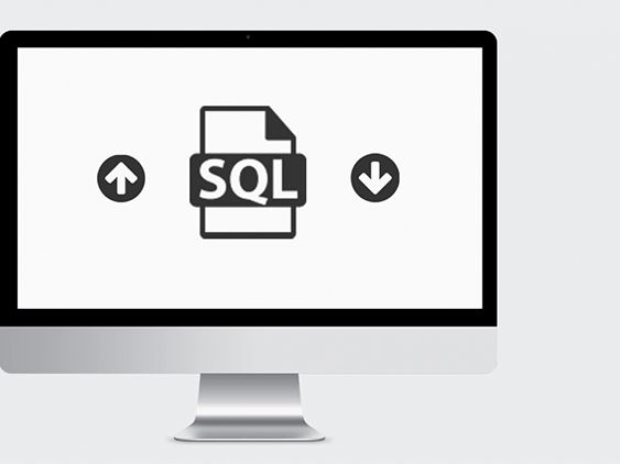 Smart software solution to save and storage essential data on a local server.