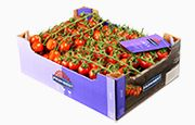 Products of Lans Tomatoes a happy customer of our smart weighing & software solution.
